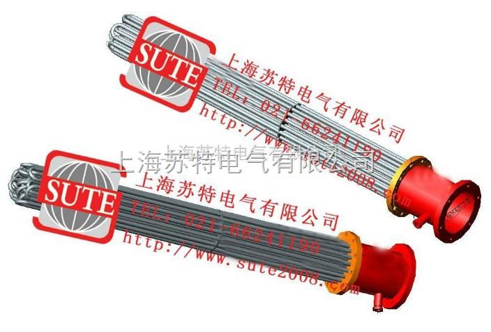 ST插入式电加热器