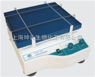 TSB-108型其林贝尔仪器/摇床/往复式脱色摇床