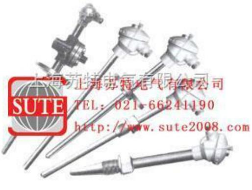 ST1096耐磨热电偶