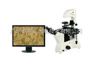 ME41数码倒置显微镜