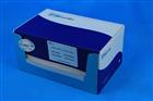 小鼠钙调磷酸酶(CaN)ELISA Kit