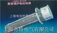 STLGRG1型联苯加热器