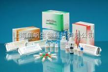 人抗BP180抗体(BP180-Ab)ELISA试剂盒