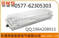 防爆防腐全塑荧光灯材质的防爆要求