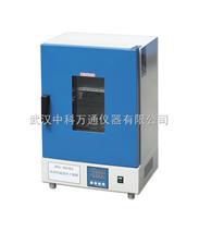 DGG-9000立式电热鼓风干燥机