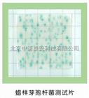 蜡样芽胞杆菌测试片蜡样芽胞杆菌检测纸片
