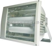 YD.1-ZC990-W  防水防尘防腐泛光灯,免维护节能灯