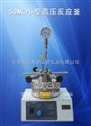 50ML小型高压反应釜