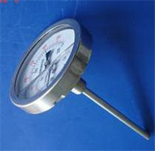 BDE-WSSN耐震双金属温度计