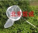 ZC-BCW捕虫网、伸缩式捕虫网/昆虫采集网、蝴蝶网