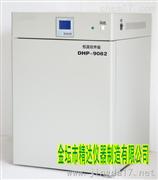 DHP-9032B智能電熱恒溫培養箱