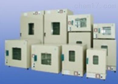 电热恒温干燥箱DHG-9241A