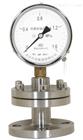 YMF-150B/F4隔膜压力表