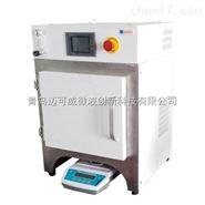 电加热热重分析仪/分析设备厂家