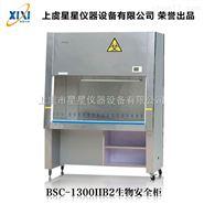 BSC-1300IIB2型生物安全柜