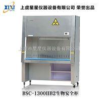BSC-1300IIB2二级全排风洁净生物安全柜作用