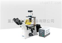 XD倒置熒光顯微鏡