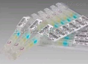 人基质金属蛋白酶2(MMP-2)ELISA试剂盒