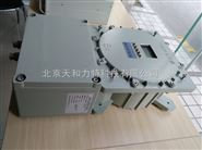防爆在线H2氢气分析仪