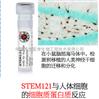 STEM121抗体