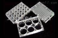 科晶522-38013细胞培养板,细胞培养板代理价