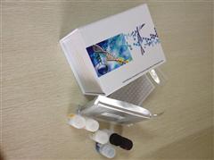 植物凝脂酸(PA)ELISA檢測試劑盒