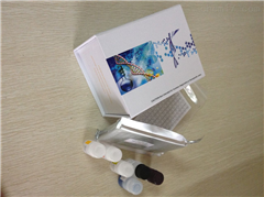 鸭碘甲腺原氨酸脱碘酶III型(DIOIII)ELISA试剂盒