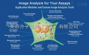 MetaMorph高级图像分析软件