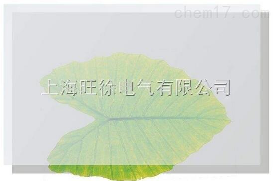 JT0101A高抗撕硅膠板