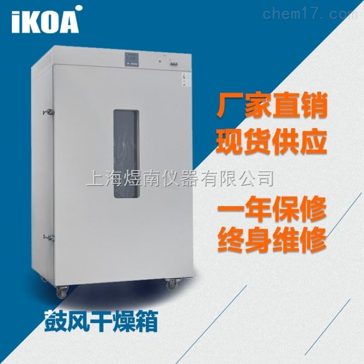 鼓风干燥箱 大尺寸恒温烘箱 工业烤箱