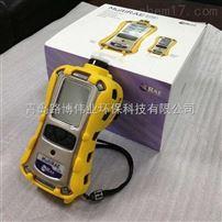 PGM-62X8 MultiRAE Lite便携式多气体检测仪