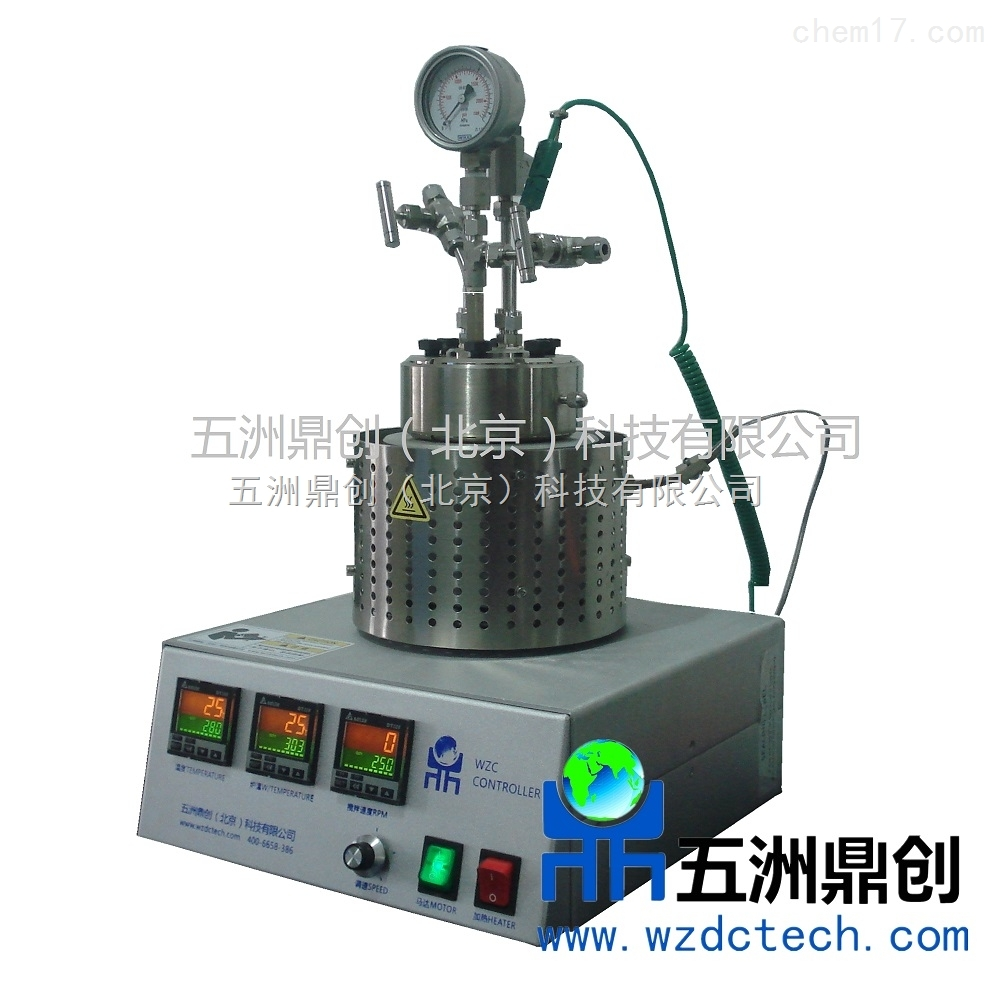 WZC100小型磁力搅拌反应釜