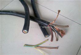 YQW户外用电缆-YQW户外用耐油电缆