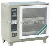 ZFX-10A高品质砖瓦泛霜箱,自控型泛霜箱厂家