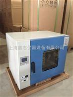 DHG-9240A立式电热恒温鼓风干燥箱 恒温烘箱 上海烘箱 电热干燥箱 恒温箱