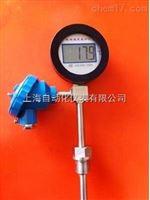 DTMP-481 带变送输出数字温度计