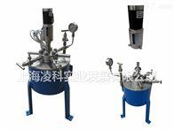 CJF不銹鋼高壓反應釜