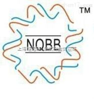 NQBB代理