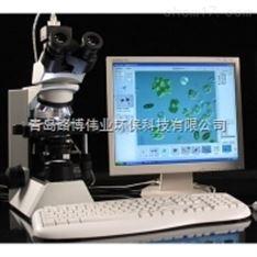 路博LB-S200型藻类智能鉴定计数仪