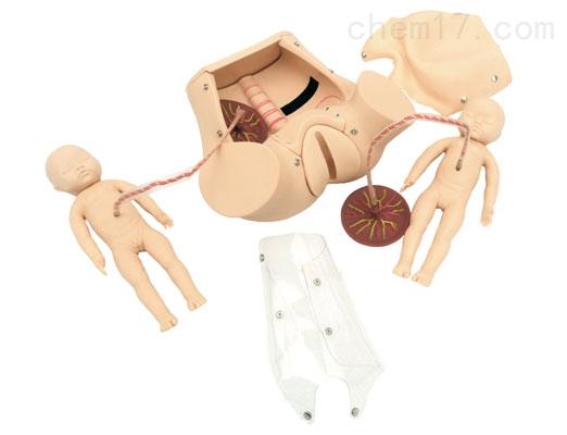 高级分娩综合技能训练模型 妇婴