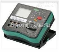 大量供应DY5101 数字式绝缘电阻多功能测试仪