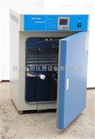 大型電熱恒溫培養箱DHP-9272