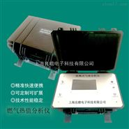便携式燃气热值分析仪