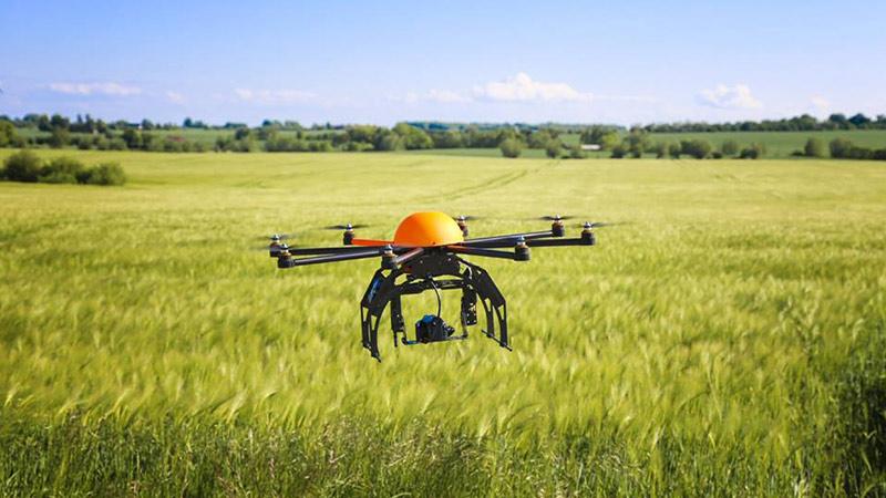 """合肥正式启动""""无人机""""监测农作物种植分布"""