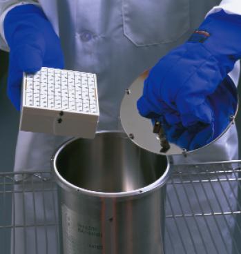 美国MVE IATA液氮罐