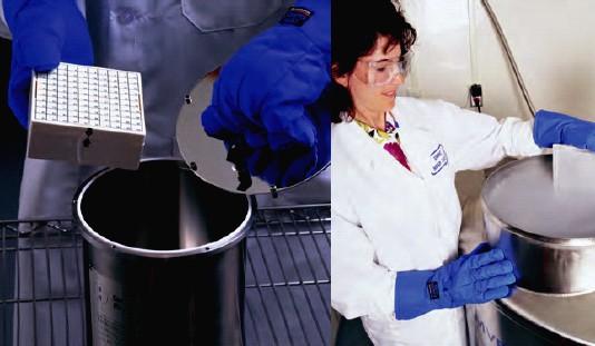 美国MVE 液氮罐