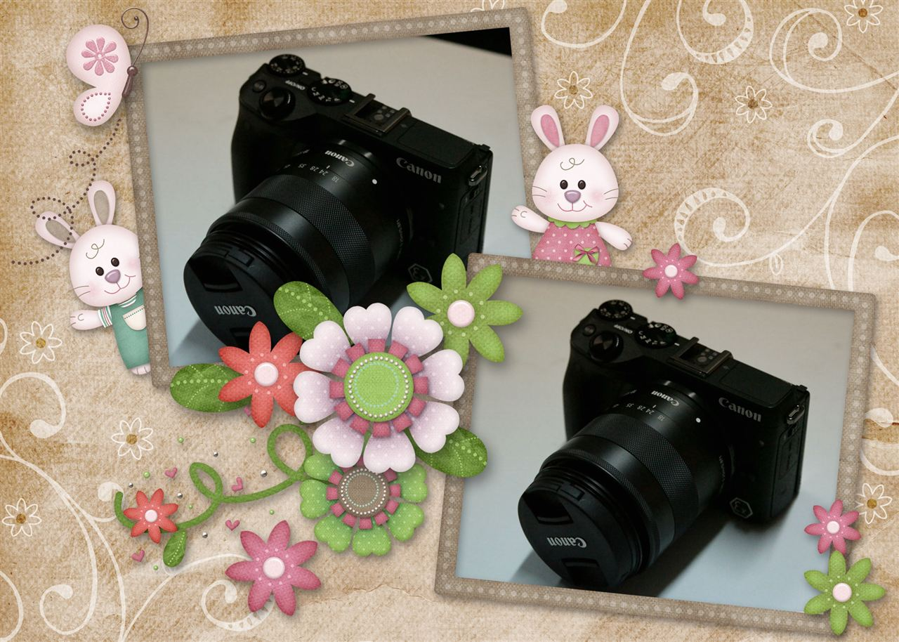 photo16_b.jpg