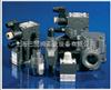 AGAM-10/10/210-I X24阿托斯AGAM-10/10/210-I X24DC