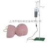 高级婴儿头皮静脉注射训练模型
