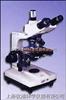 BM-12三目落射透射显微镜  上海上光1600倍透射显微镜